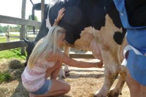 kelder farm, family farm, milk