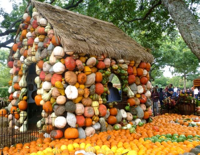 A Gourd House!
